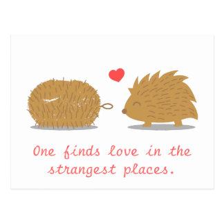 El erizo lindo encuentra su amor verdadero en un c postal