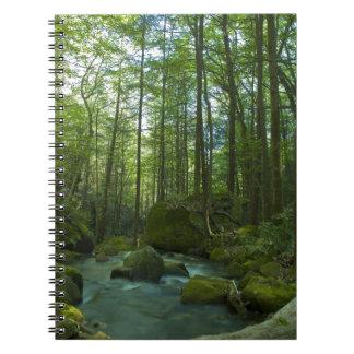 El escape del bosque spiral notebooks