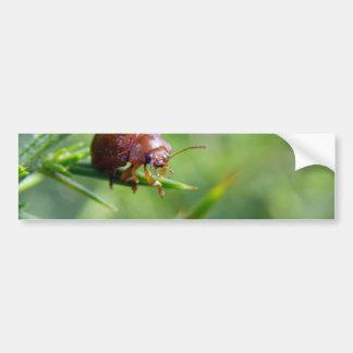 El escarabajo agita hola pegatina para auto