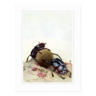 El escarabajo sagrado tarjetas postales