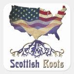 El escocés americano arraiga a los pegatinas pegatina cuadrada