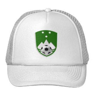 El escudo verde de Eslovenia adaptó el emblema de  Gorro De Camionero
