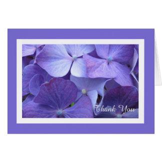 El espacio en blanco de la flor del Hydrangea le a Tarjetas