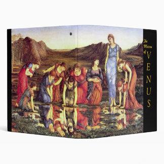El espejo de Venus - carpeta 1875