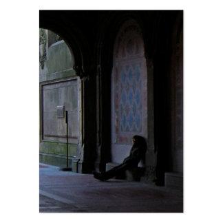 El esperar en el ATC de la foto de Bethesda Tarjetas De Visita Grandes