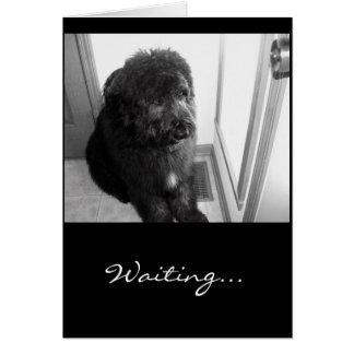 El esperar… tarjeta de felicitación