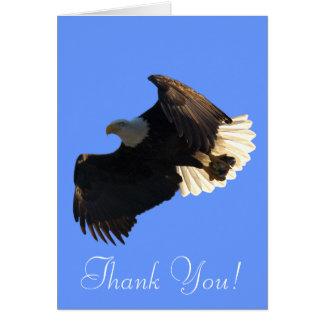 El espíritu libre de Eagle calvo que vuela le Tarjeta De Felicitación