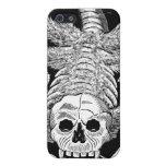 El esqueleto de la araña iPhone 5 cárcasas
