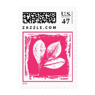 El esqueleto de la frambuesa deja el grabar en timbres postales