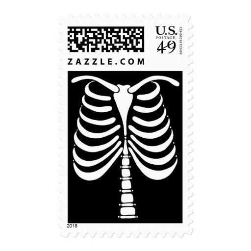 El esqueleto deshuesa el sello