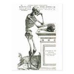 El esqueleto pensativo postales