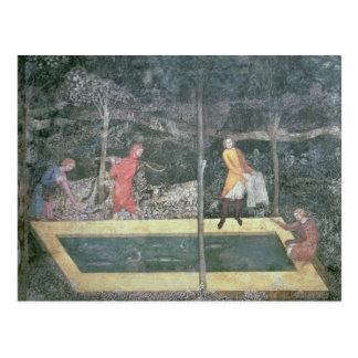 El estanque de peces del cuarto del macho 1343 tarjeta postal