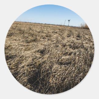 El estar al acecho en la hierba pegatina redonda