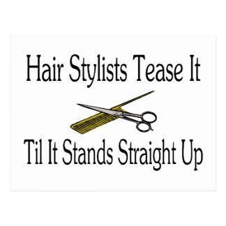 El estilista lo toma el pelo hasta que se coloca tarjetas postales