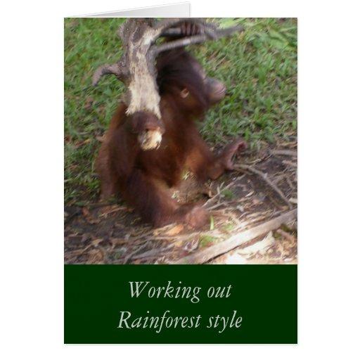 El estilo de la selva tropical se resuelve tarjeta pequeña