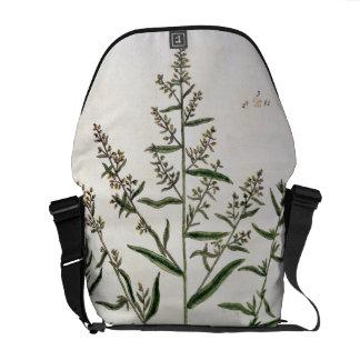 """El estragón, platea 116 """"de un herbario curioso"""",  bolsa de mensajería"""