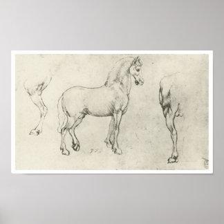 El estudio de un caballo y de un él es cuartos tra póster