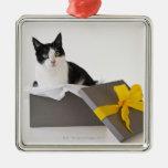 El estudio tiró de gato blanco y negro en caja de adorno navideño cuadrado de metal