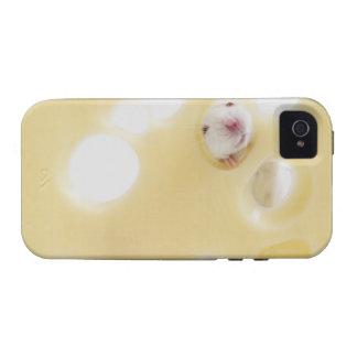 El estudio tiró del ratón blanco que miraba a trav iPhone 4/4S fundas
