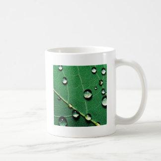 el extracto colorea las gotas de agua en leaf.jpg  taza