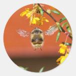 El felices manosean la abeja etiqueta