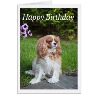 El feliz cumpleaños florece a rey arrogante tarjeta de felicitación