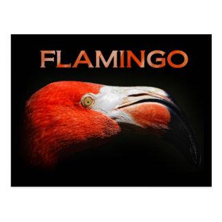 El flamenco - detalle principal tarjeta postal