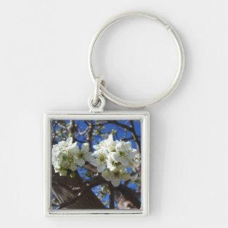 El flor blanco agrupa el peral floreciente de la llavero cuadrado plateado