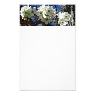 El flor blanco agrupa el peral floreciente de la  papeleria de diseño