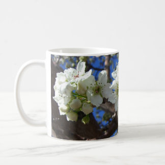 El flor blanco agrupa el peral floreciente de la taza clásica