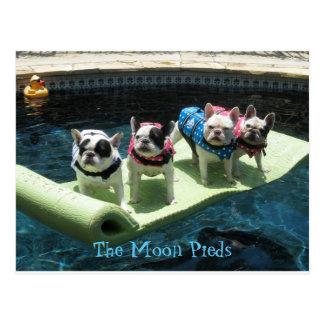 El flotador de la piscina de Pieds de la luna Tarjetas Postales
