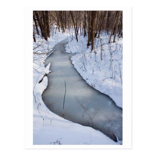 el fluir congelado tarjetas postales
