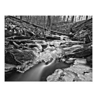 El fluir en blanco y negro impresion fotografica