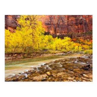 El fluir en otoño tarjetas postales