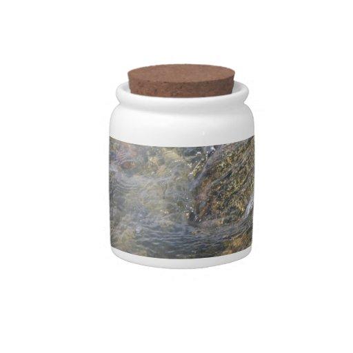 El fondo oceánico jarras para caramelos