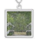 El fondo verde del mangle, atraca llevar adentro collar personalizado
