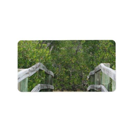 El fondo verde del mangle, atraca llevar adentro etiqueta de dirección
