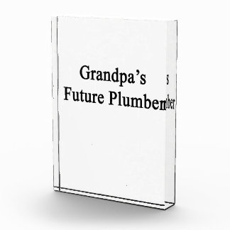 El fontanero futuro del abuelo