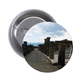 El FORO DE POMPEYA - fragmentos de la columna Pin