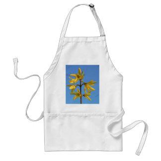 El Forsythia amarillo brillante florece la foto de Delantal