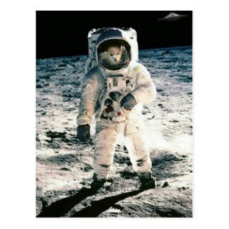 El Fox es astronauta #1 Postal