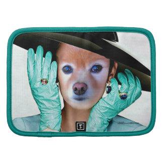 El Fox es la señora With Gloves Planificadores
