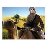 El Fox es Lorenzo de Arabia Tarjeta Postal