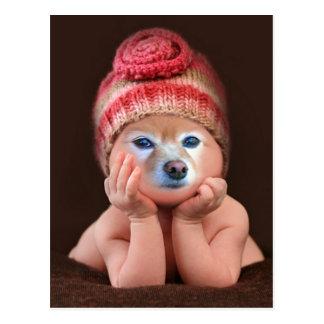 El Fox es un bebé en un casquillo de punto Postal
