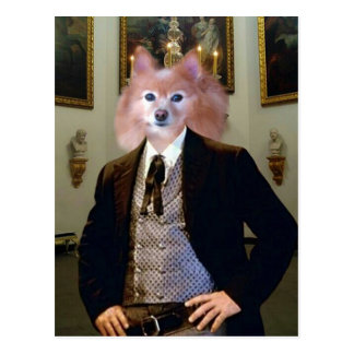 El Fox es un caballero meridional Tarjeta Postal