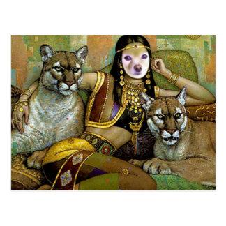 El Fox es una belleza india Tarjetas Postales