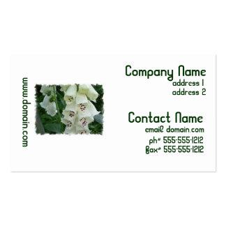 El Foxglove blanco florece tarjetas de visita