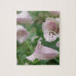El Foxglove florece rompecabezas