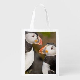 El frailecillo atlántico, un ave marina pelágica,  bolsa de la compra