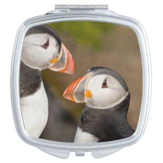 El frailecillo atlántico, un ave marina pelágica, espejo para el bolso